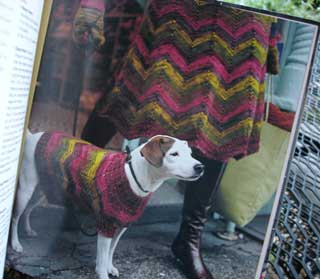 Zigzag Poncho/Skirt and Dog Sweater